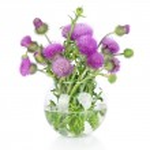 Beautiful purple burdock wild flowers in vase isolated on white — Stock Photo