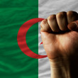 Hard fist in front of algeria flag symbolizing power — Stock Photo