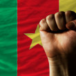 Hard fist in front of cameroon flag symbolizing power — Stock Photo