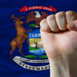 Us state flag of michigan with hard fist in front of it symboliz — Stock Photo #11018871