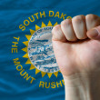 Us state flag of south dakota with hard fist in front of it symb — Stock Photo