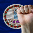 Us state flag of virginia with hard fist in front of it symboliz - Stock Photo