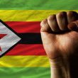 Hard fist in front of zimbabwe flag symbolizing power - Stock Photo