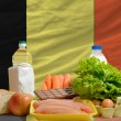 Basic food groceries in front of belgium national flag — Zdjęcie stockowe #11030422