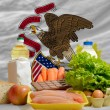 Basic food groceries in front of illinois us state flag — Stock Photo #11032176