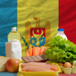 Basic food groceries in front of moldovnational flag — Stock Photo #11033230