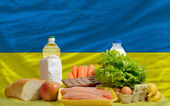 Basic food groceries in front of ukraine national flag — Stock Photo