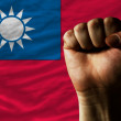 Hard fist in front of taiwflag symbolizing power — Stock Photo #11042572