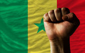 Hard fist in front of senegal flag symbolizing power — Stock Photo