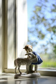 Shepherd and sheep by the window — Stockfoto