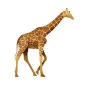 Marionnette girafe papier recyclé — Photo