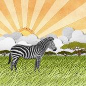 Zebra recycled paper background — Stock Photo