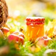 Stock Photo: Apple jam in jar