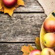 Stock Photo: Autumn background with apples