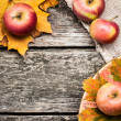 Autumn background — Stock Photo #10909725