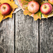 Stock Photo: Autumn border from apples and yellow leaves