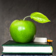 Apple, chalk and pencil on textbooks — Stock Photo #10909762