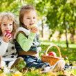 Children eating apples — Stock Photo