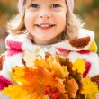 Child in autumn park — Stock Photo #10909829