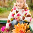 Foto Stock: Child on playground in autumn