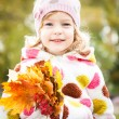 Royalty-Free Stock Photo: Child with bunch of maple leaves