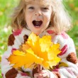 Child with yellow maple leaves — Stock Photo #10909844