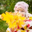 Child hidden behind yellow leaves — 图库照片