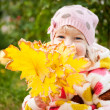 Child hidden behind yellow leaves — Stok fotoğraf