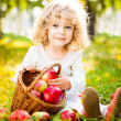 Child with basket of apples — Stok fotoğraf
