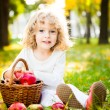 Child with basket of apples in autumn park — Stock fotografie
