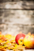 Autumn border from apples and leaves — Stock Photo