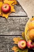 осенью фоне — Стоковое фото