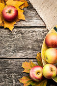 Autumn background with apples — Stok fotoğraf