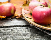 Autumn apples — Stock fotografie