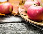 Autumn apples — Stock Photo