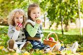 Crianças comer maçãs — Foto Stock