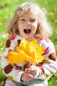 Child with yellow maple leaves — Foto Stock