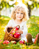Child with basket of apples — Foto de Stock