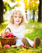 Child with basket of apples in autumn park — Stok fotoğraf