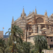Palmde Mallorccathedral — Photo #10795589