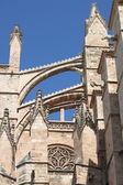 Palma de Mallorca cathedral — Stock Photo
