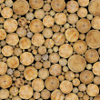 Stock Photo: Stacked Logs Background