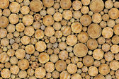 Stacked Logs Background — Stock Photo