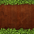 Old wooden background with green floral frame — Stockfoto