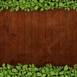 Stock Photo: Old wooden background with green floral frame