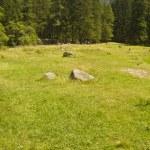 Trekking in Val Masino — Stock Photo