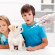 Worried kids with their pet at the veterinary — Stock Photo