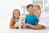 Kids taking their pet to the veterinary — 图库照片