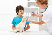Young boy with his dog at the veterinary — Stock Photo