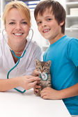 Boy and his kitten at the veterinary office — Stock Photo